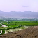 Syrdarya river and Khujand rice field